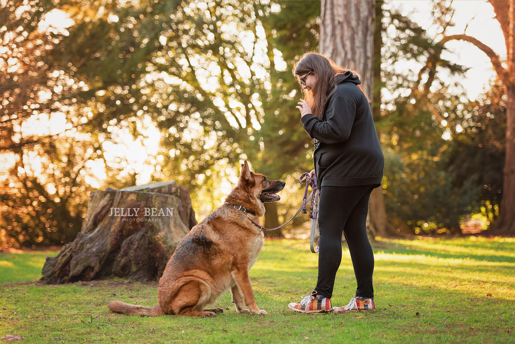 Girl and her dog training sit