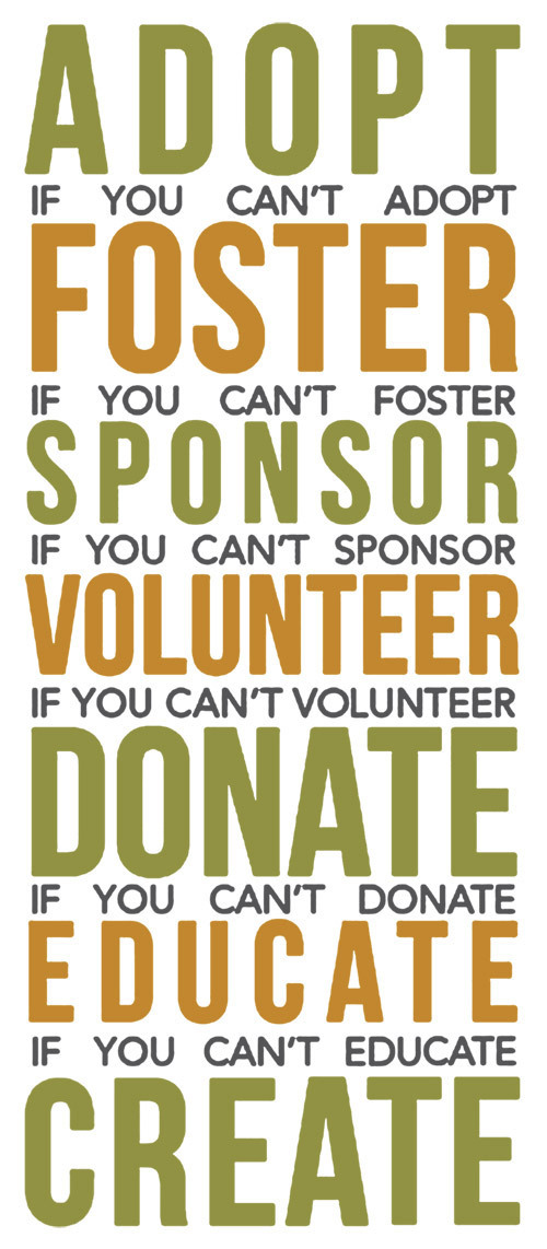 Adoption and volunteering poster