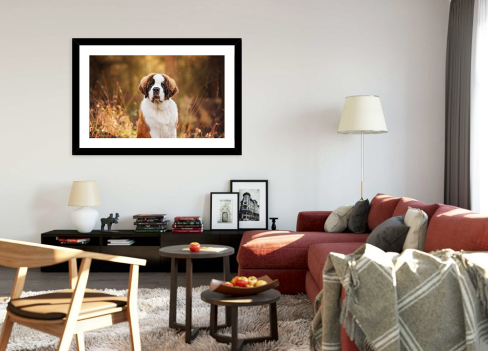Black framed print of puppy on living room wall