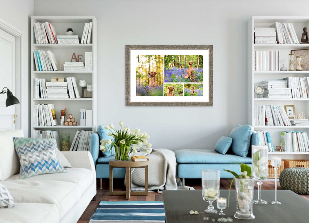 framed-storyboard-of-red-labrador-in-lounge