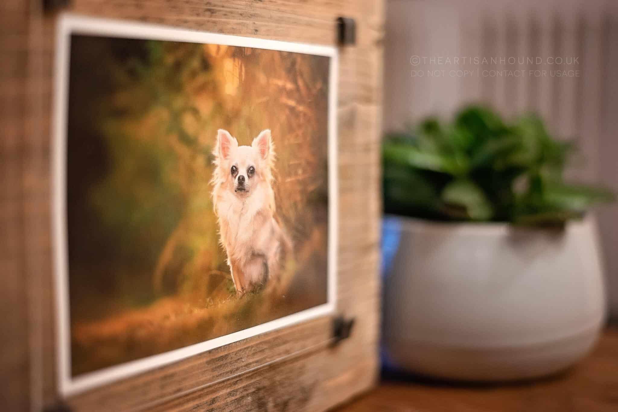 detail shot of wooden photo block