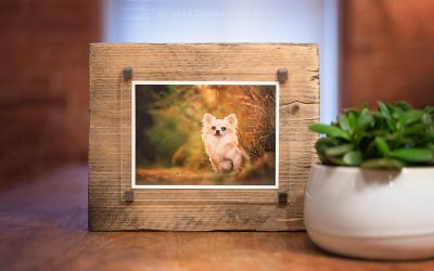 PRODUCT SPOTLIGHT | WOODEN PHOTO BLOCK