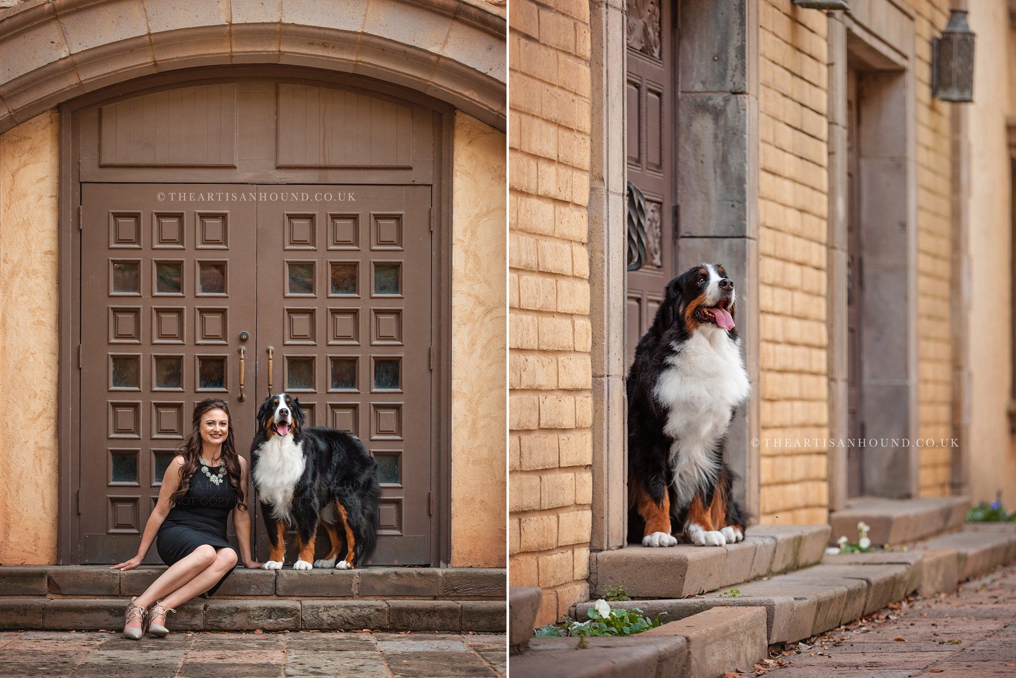 Dog and owner sitting in urban doorway