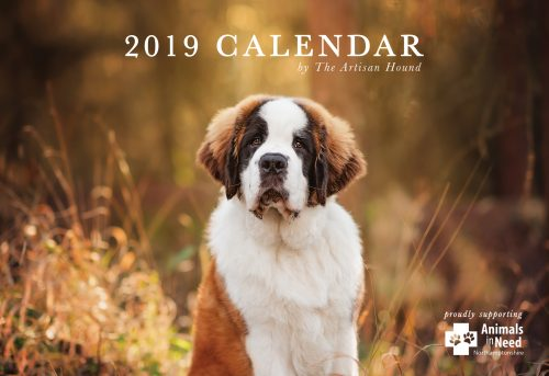 charity calendar front cover with st bernard puppy