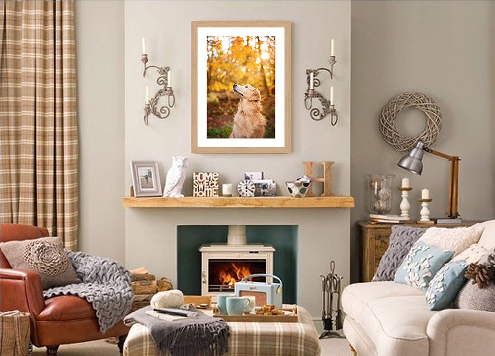 frame of golden retriever above fireplace