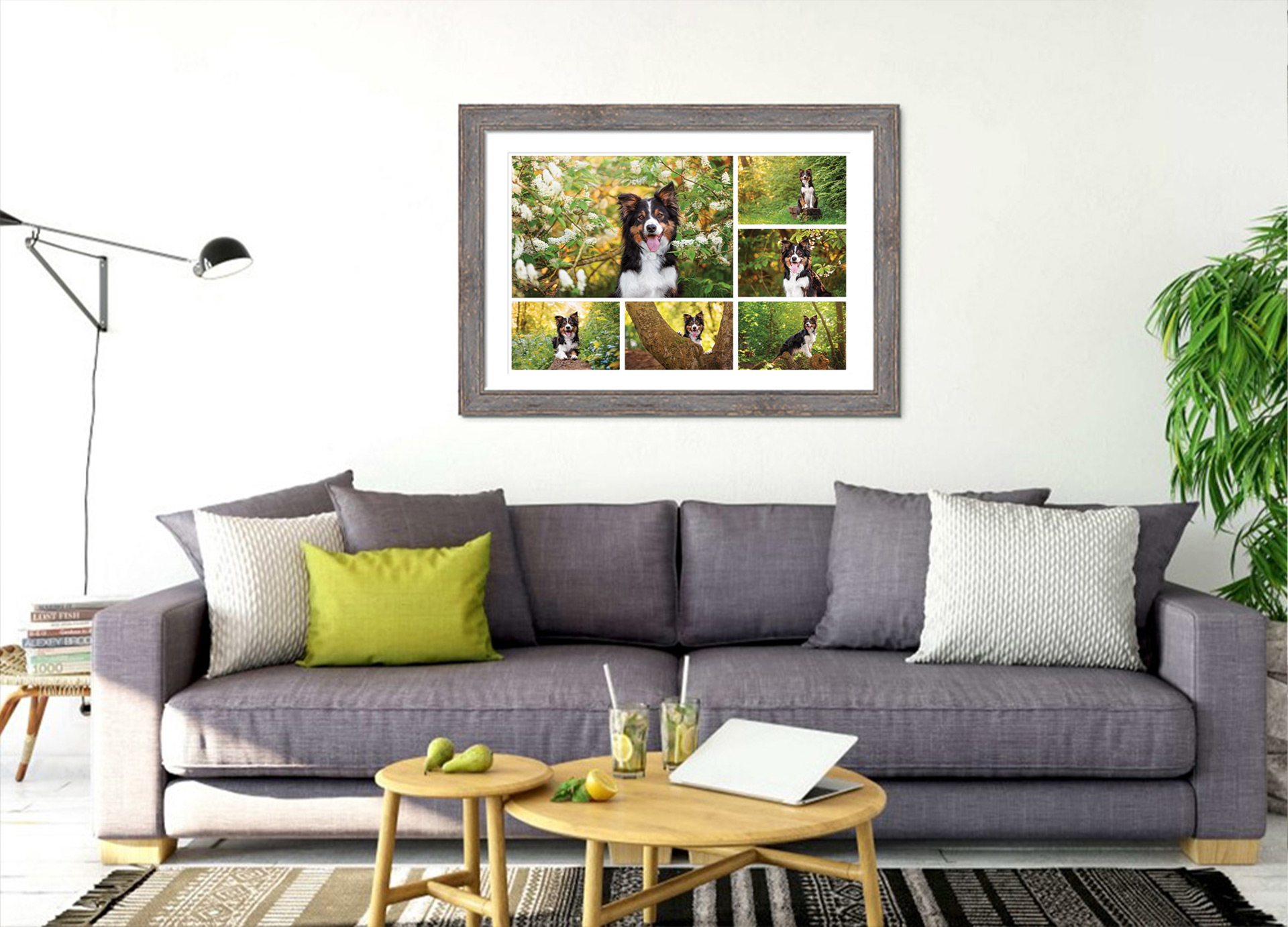 wooden framed storyboard of border collie above sofa