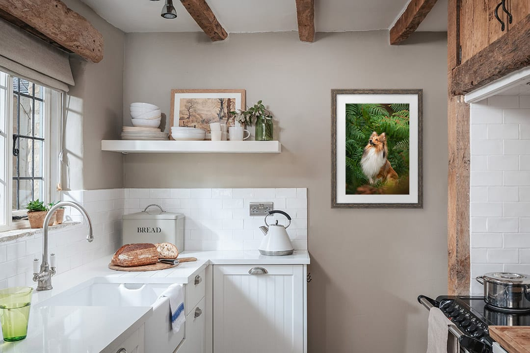 Wooden framed dog photograph hanging on kitchen wall